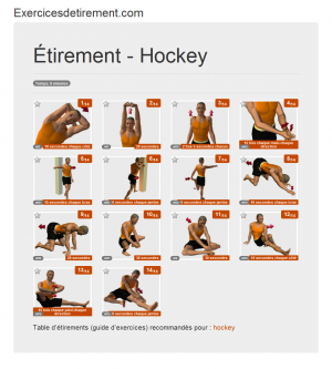 L'image étirement: Hockey